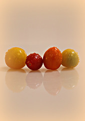 2018 Sydney: Mini Tomato Medley (dominotic) Tags: 2018 food tomato fruit reflection waterdrops colourfultomatomedley yellow red green orange yᑌᗰᗰy sydney australia