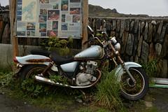 Old Harley (PentlandPirate of the North) Tags: motorbike rust decay derelict suzuki japanese harleydavidson abandoned justteasingyounik