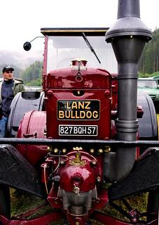 Bulldog-Fest in Schwarzenberg-Schönmünzach