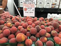 Sangre de Toro peaches from Tenerelli Orchards (TomChatt) Tags: food farmersmarket