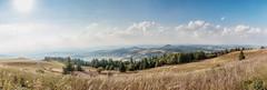 Wasserkuppe - Pano1 - 08-2018 (immerheiser) Tags: hilders wasserkuppe rhön biosphärenreservat poppenhausen milseburg hessen landschaft panorama immerheiser landscape nature natur