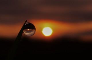 Big Sun, Little Sun..x
