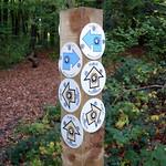 GOC Cholesbury to Chartridge 027: Which way?! thumbnail