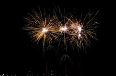 Feuerwerk beim 1. Hafenfest auf Graf Bismarck (Kurt Gritzan) Tags: gelsenkirchen germany feuerwerk ruhrpott ruhrgebiet rheinhernekanal firework 401ge