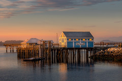 fish market waking up (kellypettit) Tags: harbour morning sunrise vancouverisland red happiness peacefulness bliss