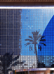 Entrance to an office building (chrisk8800) Tags: architecture entrance office building glass lines squares geometric reflections palmtrees barcelona