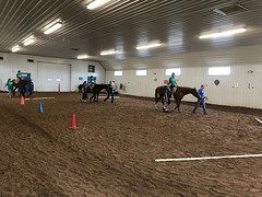 Exceptional Equestrians 2018 Horse Show