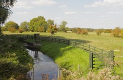 River Kennett (Adam Swaine) Tags: rivers river riverbank england english englishlandscapes englishrivers counties countryside county canon cambs rural waterways fields uk ukcounties beautiful naturelovers nature 2018 walks britain british greatbritain eastanglia trees