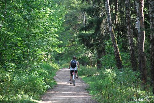 Ліс InterNetri.Net 762
