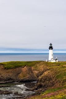 Yaquina Head Light Oregon