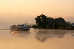 good morning (sabine1955) Tags: elbefrühnebelschiffsunrise sonnenaufgang bäume trees fluss river geesthacht wasser day fog nebel