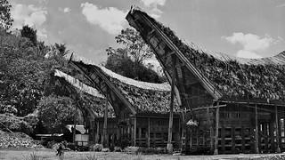 INDONESIEN; SULAWESI, Tanah Toraja in Lemo (tongkonans), 17621/10630