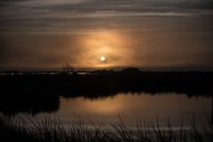 DSC_5418 (capt_tain Tom) Tags: sunrise sunreflection sunriseonthebayou sunriseneworleans marsh salt saltmarsh