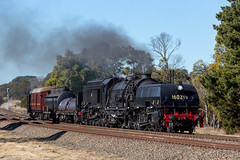 Excitement at Exeter (deanoj305) Tags: exeter newsouthwales australia au