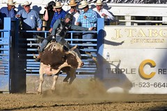 "Baker County Tourism – basecampbaker.com 47152 (Base Camp Baker) Tags: oregon ""easternoregon"" ""bakercountytourism"" basecampbaker ""basecampbaker"" ""bakercounty"" rodeo cowboys ""bakercitybroncandbullriding"" ""bakercity"" ""oregonrodeo"" ""minersjubilee"" oregonrodeo ramrodeo traveloregon travel tourism roughstock rodeolife bulls bullriding"
