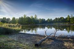 Down (Geert E) Tags: retie landscape vijver landschap kattesteertvijver water étang glare hdr