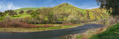 Kings River (James L. Snyder) Tags: quercus oak trees grass shrubs bushes brush peak foothills hills mountains canyon rocks savanna grassland beach shore river water riverbank riverside riverbed wetland countypark park vernal verdant riparian rural country green red sunlight bright bluesky cirrus clouds sunny wintonpark northpiedraroad easttrimmerspringsroad kingsriver redmountain westernsierra sierranevada sierra piedra fresnocounty california usa horizontal panorama afternoon march winter 2016