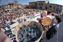 70 MAHATZ FESTA  IMG_5861 QUINTAS (ARABAKO FORU ALDUNDIA DIPUTACION FORAL DE ALAVA) Tags: mahatbilketa arabako errioxako xxv festa fiesta de la vendimia rioja alavesa 20180916