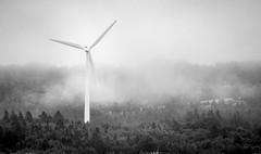 Éolienne en Gaspésie (Luc Jacob) Tags: gaspésie lieux vacance vacances villes voyage voyages