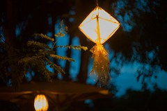 L1010734_1280 (Eternal_light_stars) Tags: a7r amazon angel art asia autumn beauty bokeh buddha canon christ color colorful creation cute digital dream eternal extreme fantastic fantasy festival film flower focus girl hope human jewelry journey leica lens life light love lovely m42 macro magical mirrorless nature nikon optical passion petzval photo portrait pretty sacred scene smile sony soul spiritual spring summer tranquility travel twinkle vintage winter world amazing angenieux cat chinese cool dallmayer divine dramatic eos fashion friends google