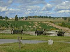 Al 029 (SegTours of Gettysburg) Tags: al