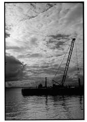 crane (jollyville) Tags: blackandwhite 35mm leica leicam2 voigtlander colorskopar35mmf25 35mmf25 fp4 ilfordfp4 rodinal seattle