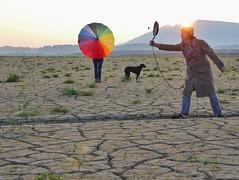 Von der Sinnlosigkeit, (flori schilcher) Tags: schilcher forggensee sonnenaufgang sunrise littledoglaughedstories