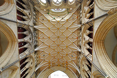 Lovely vaulted ceiling of the York cathedral (UK) (Manfred_H.) Tags: architecture deckenkonstruktion geb building sacral ceilingconstruction vaultedceiling kirchen kathedrale cathedral york uk unitied kingdom