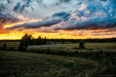 August fields (Joni Mansikka) Tags: summer nature outdoor rural fields trees silhouettes sky clouds colours landscape lieto suomi finland tokinaaf2880mmf28 atx280afpro