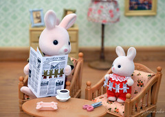 Sylvanian Families - The newspaper (Sylvanako) Tags: sylvanian families newspaper comic funny bunny rabbit father baby diorama miniature calico critters crafting