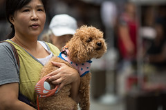 5F0A6766 (The Introvert Photographer) Tags: korea seoul portrait street asia people young asian fassion modern canon 135mm naturallight candid dog puppy animal woman pretty attractive 5d south southkorea beautiful