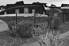 Camping d'Equihen-Plage (montane.stephane) Tags: architecture maisons camping côtedopale monochrome noiretblanc france pasdecalais equihenplage