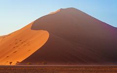 Sossusvlei (Mathijs Buijs) Tags: namib naukluft national park sossusvlei kalahari desert sand dune sunrise trees deadvlei south west southern africa canon eos 7d sesriem