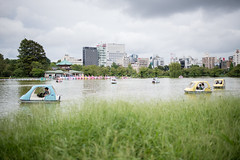 DSC_1888_ (yaa-) Tags: d850 nikon nikkor tokyo kanto 3518fx ueno 上野 不忍池 snap