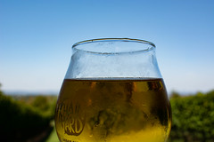 Chain_Yard_cider-1_MaxHDR_Contrasr_Dehaze (old_hippy1948) Tags: cider glass