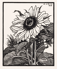 Sunflower (1919) by Julie de Graag (1877-1924). Original from the Rijks Museum. Digitally enhanced by rawpixel. (Free Public Domain Illustrations by rawpixel) Tags: antique art artwork drawing floral flower handdrawn illustrated illustration illustrator juliedegraag leaf old sketch stamp sunflower vintage woodcut