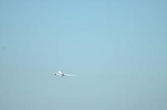 ANA B787 JA821A Leaving Haneda Airport (ykanazawa1999) Tags: ana b787 plane haneda airport ukishima kawasaki kanagawa japan
