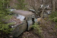 Generationenmix (mariburg) Tags: rotten marode ruin decay desolate derelict cars rustycars auto canoneos6d sigma35mm14dghsmart
