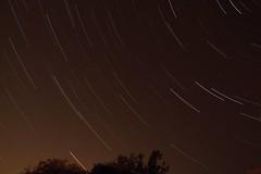 Week 33 - Backyard startrails (shokisan) Tags: project52 stars startrails glow light polution arc