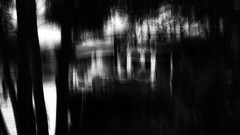 Ghost boat (Zara.B) Tags: icm intentionalcameramovement bw blackandwhite riverbank abstract impression slowshutterapp iphone
