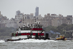 r_180909254_beat0075_a (Mitch Waxman) Tags: 2018greatnorthrivertugboatrace hudsonriver manhattan tugboat workingharborcommittee newyork