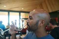 IMG_6590 (willsonworld) Tags: willamette valley wine tasting dan diane cat jose david dave grapes 2014