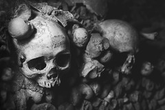 Catacombes, Paris, France (pas le matin) Tags: macro closeup travel voyage bw nb monochrome death mort skull crâne human humain world paris catabombes france europe europa underground noiretblanc blackandwhite canon 350d canon350d canoneos350d eos350d