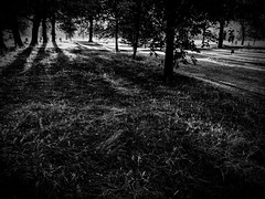rnor80863.jpg (Robert Norbury) Tags: fuckit somearelandscapessomearenot icantbearsedkeywording fineartphotography blackandwhite photographer itdoesntmatterwhattheyarepicturesoftheyarejustpictures itdoesntmatterwhattheyarepicturesoftheyarejustpictur