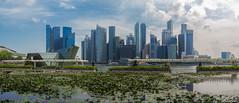 Singapore Skyline Panorama 2018 (fandarwin) Tags: singapore skyline panorama mbs marina bay sands darwin fan fandarwin olympus omd em10