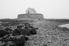 Seventh century church of Saint Cwyfan on the tidal island of Cribinau, Anglesey (Richard Needham) Tags: anglesey cribinau blackandwhite church island wales