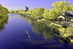 Lone Evening Row Along Erie Canal (infrared) (dr_marvel) Tags: ny pittsford rochester newyork canal waterway eriecanal oars crew row rowing excercise ir infrared yellow blue evening lone