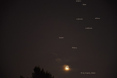 The Twins (tripod_treker) Tags: geminiconstellation moon stars night tree zodiacsign gemini