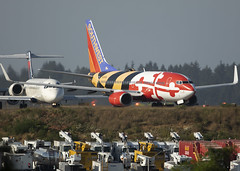 N214WN_737_SWA_KSEA_8457 (Mike Head -Jetwashphotos) Tags: boeing 737 737700 7377h4 sw swa southwestairlines sea ksea seatacairport wa washingtonstate us usa america