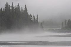 Fog - Alaska (Captures.ch) Tags: wolken regen rain nebel fog clouds tag abend evening day fall herbst kenaifjordsnationalpark alaska kenaipeninsula seward water wasser wald tree tal stone stein river landschaft landscape forest fluss baum nationalpark capture aufnahme